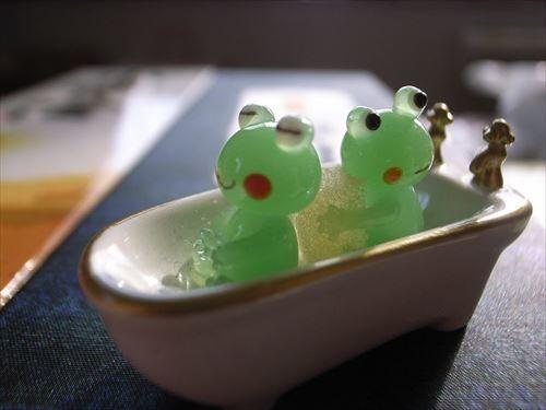 一生歯磨かなくていい or 一生風呂入らなくていい