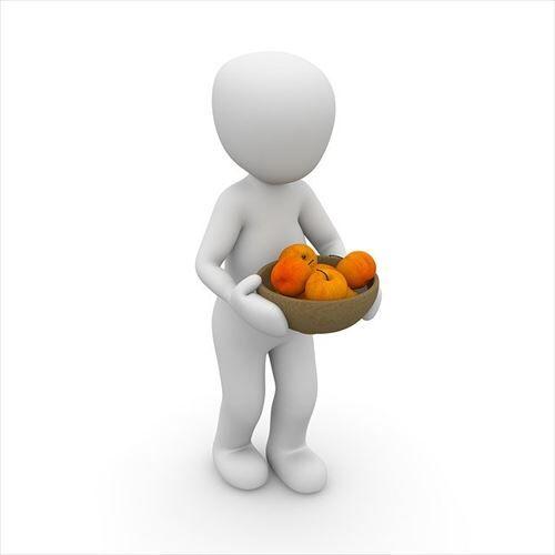 男やが1日の摂取カロリーがたぶん平均500kcal前後