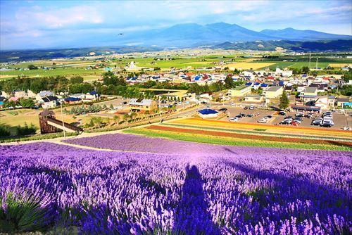 北海道とかいう地震も台風も来ない聖域