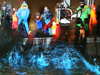 富山湾に春の訪れ ホタルイカ漁解禁 やぱっり地元は生で食べるのかな (´・ω・`)