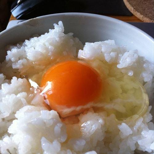 卵かけご飯にあうものwwwwwww