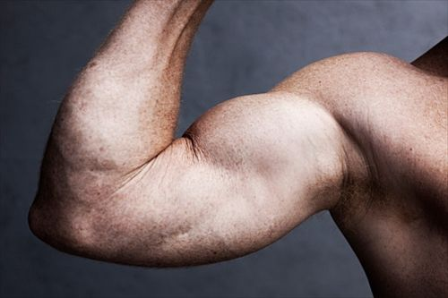 筋肉って飯大量に食って運動すれば付くの?