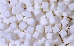 砂糖が依存性あるの知ってたか?俺は禁断症状まで出た
