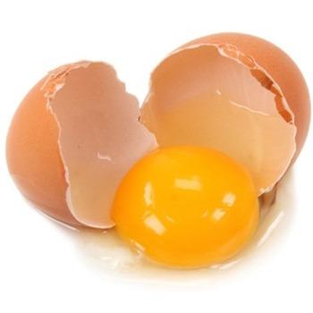 【チュニジア】生卵28個食べ20歳男性死亡 胃の痛み訴え
