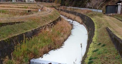 兵庫県「牛乳17トンが川に流出したけど人体に影響はない」