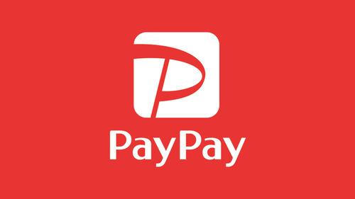 ソフトバンク「PayPay2万円相当が欲しいか?欲しけりゃくれてやる・・・ただし」