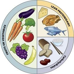 栄養バランスとか詳しい人きて