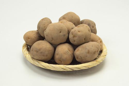 国内初ジャガイモに害虫を確認 食べても問題ないが収穫量大幅減の恐れ 北海道