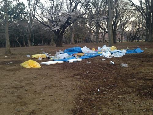 お花見シーズンで賑わう代々木公園 ゴミ放置で「台無し」の現状