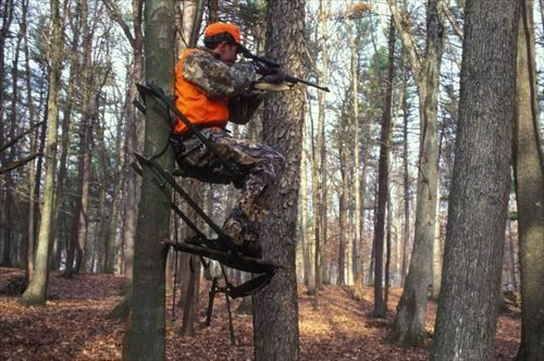 狩猟免許持ってる奴いる?