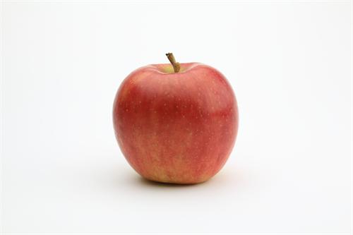 リンゴを大量にもらったのでリンゴを使った酒の肴のレシピを教えなさい