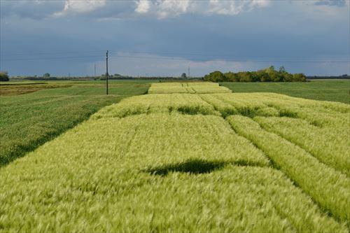 農地がないから「農業出来ない」という人へ