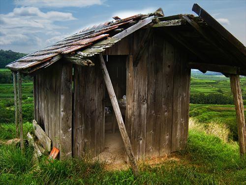 山を買って小屋を建てて猪を狩って男らしく猪の汁を作って食べる生活がしたい