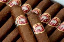 cigars-tasty_19-109928_R