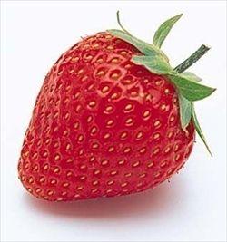 福岡県民「このイチゴすいか」