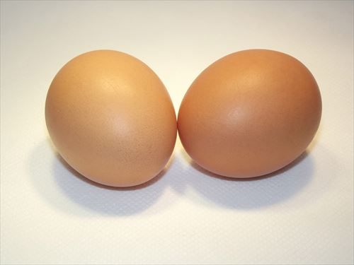 2-eggs-in-shell_R