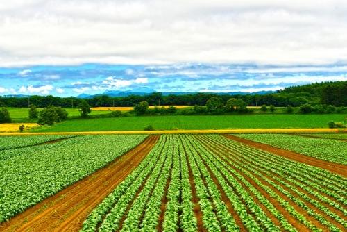 「若者よ、北海道の農村に来て!」 農家の後継者不足が深刻