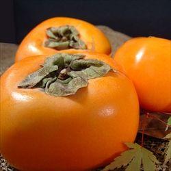 柿って大して美味しくないのに秋の定番フルーツ顔しててムカつくよな
