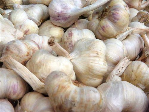 garlic-408959_960_720_R