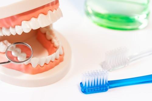 飯食ってすぐ歯磨きするやつの口腔内は逆に不潔だと判明