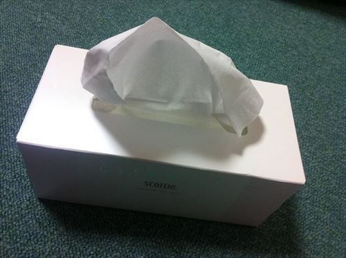 アレルギー性鼻炎とかいうガチの難病