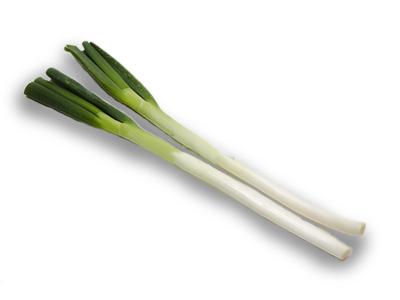 長ネギの緑色の部分っていつも捨ててるんだけど何かの料理に使えるの?