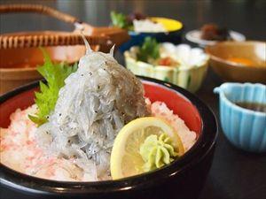 鎌倉に生しらす丼食いに行こうと思うんだけど