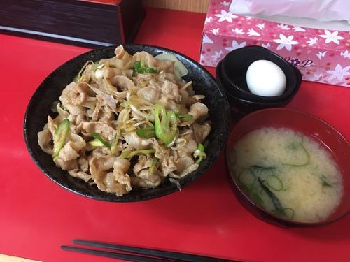 【画像】伝説のすた丼(630円)とかいうのを食べたんだが