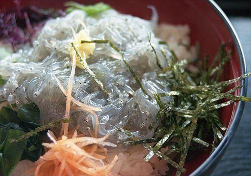 江ノ島で生しらす丼食ったんやが