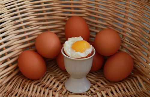 卵の黄身ってヒヨコなの?