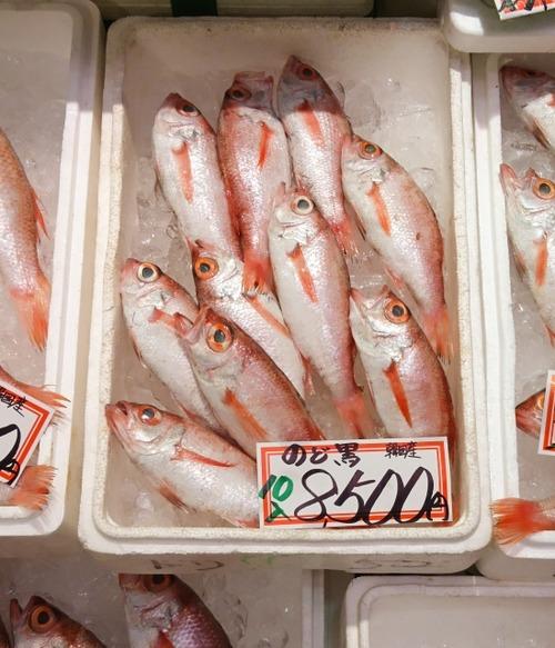 ノドグロって魚食べたことあるか?