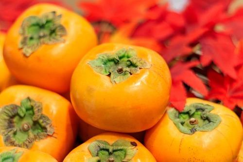 柿「味薄いです、食感微妙です、タネでかいです」←こいつが天下取れなかった理由www