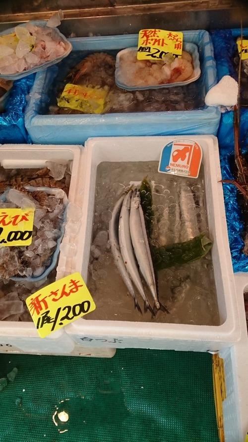 さんまが不漁で値段が1000円超えてるけど高級魚としてやってけるポテンシャルもってるよね [無断転載禁止]©2ch.net