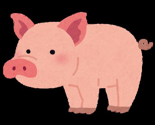 豚肉のうまい食い方