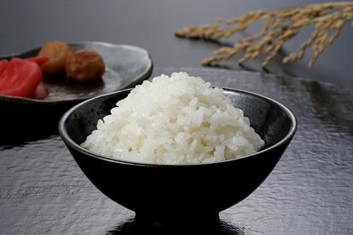炊飯機が使えないから鍋で米たく
