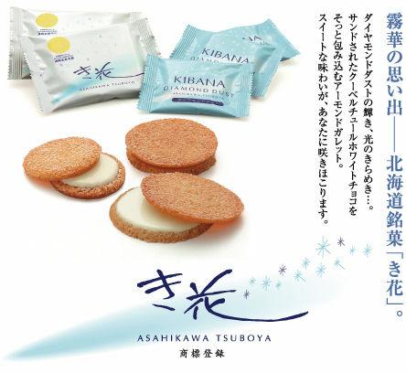 kibana_001