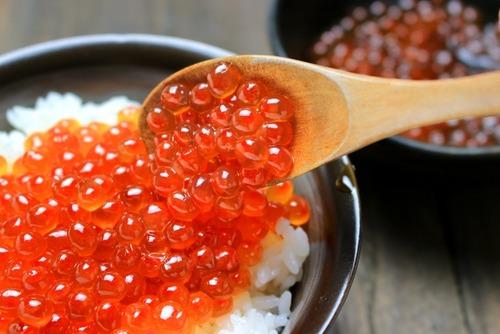 北海道「海鮮が美味いぞ!観光に来い!」
