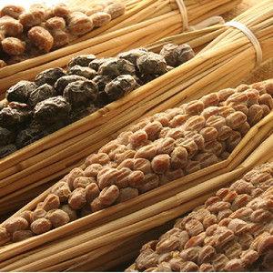 「アフリカ人に納豆を味わってもらおう!」 愛好家、タンザニアで納豆を無料配布