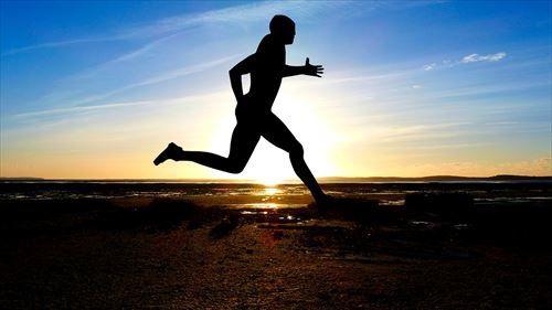 ダイエッターワイ「ハァ…ハァ…頑張って8km走ったぞ…消費カロリーは…」