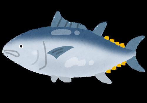 魚をぱっと見ただけで名前わかっちゃう人すごくない?