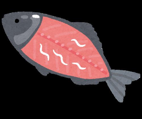 ニュース「魚にはアニサキスがいるぞ 腹痛起こすぞ」ワイ「ひえ~」