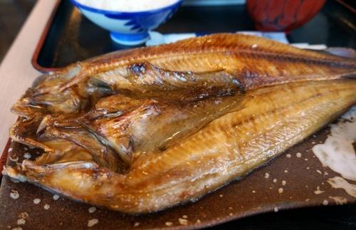 一番いらない魚、ホッケに決まる