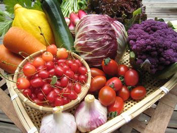 野菜が大の苦手。何とかして克服したいので美味しい野菜料理のレシピをお願いします。