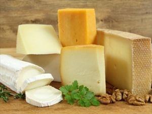 人工チーズ。牛乳不要、哺乳類の遺伝子配列を再現したイースト菌から生産。母乳チーズも