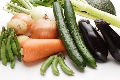 世界一栄養がないとしてギネス認定された野菜「きゅうり」