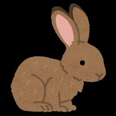ウサギって1年中発情してて1ヶ月で出産出産頭数も多いのに日本じゃ食用でひろまらんね