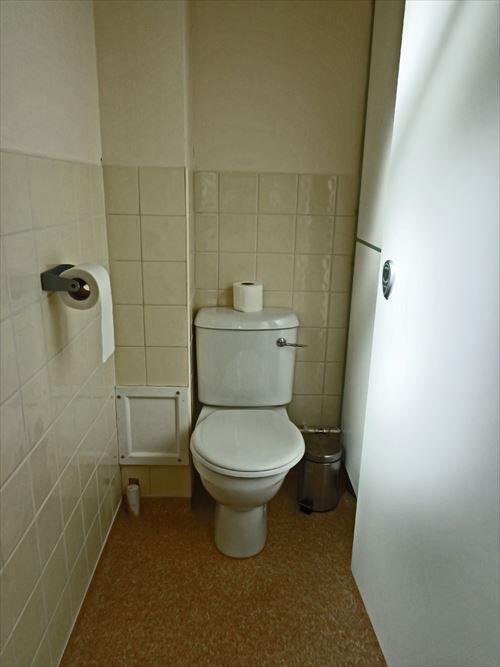 実家にトイレがふたつ以上ある人いる?