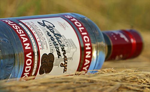 日本人「度数9%のストロング系は危険!人を壊す!」  日本人以外「ウォッカとウイスキー瓶ごとごくごく!」