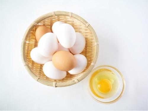 【悲報】なんJ民、卵1パック(10個入り)の値段がわからない