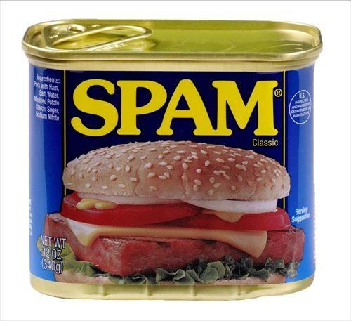 SPAM肉を大量に貰ったんだが